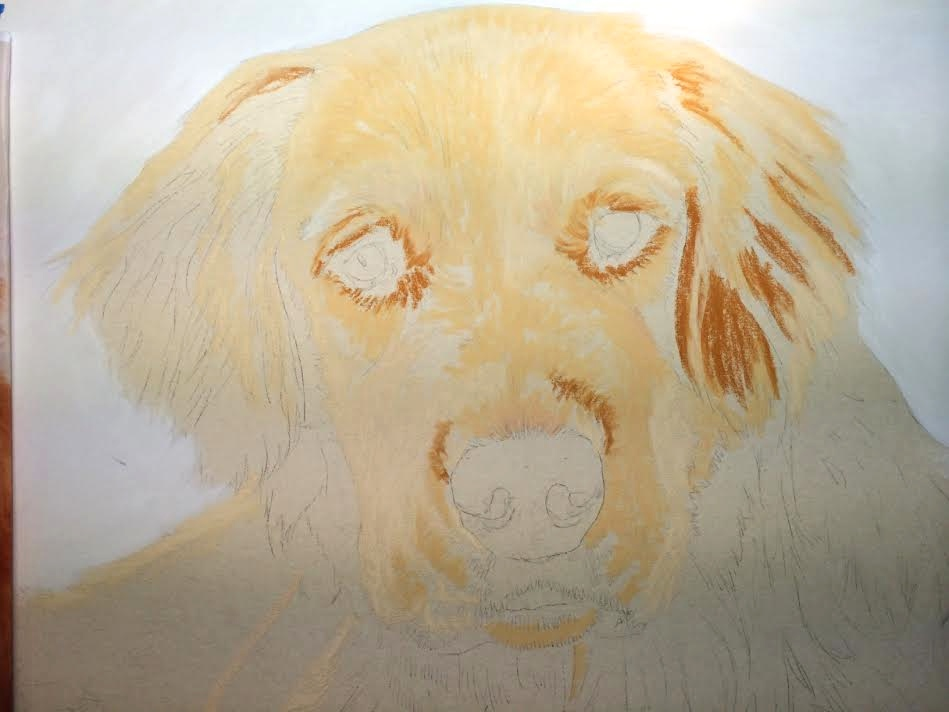 how to draw a dog custom pet portrait