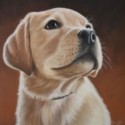 cute puppy pet portrait dog portrait custom unique gift
