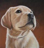 custom pet portrait puppy gift